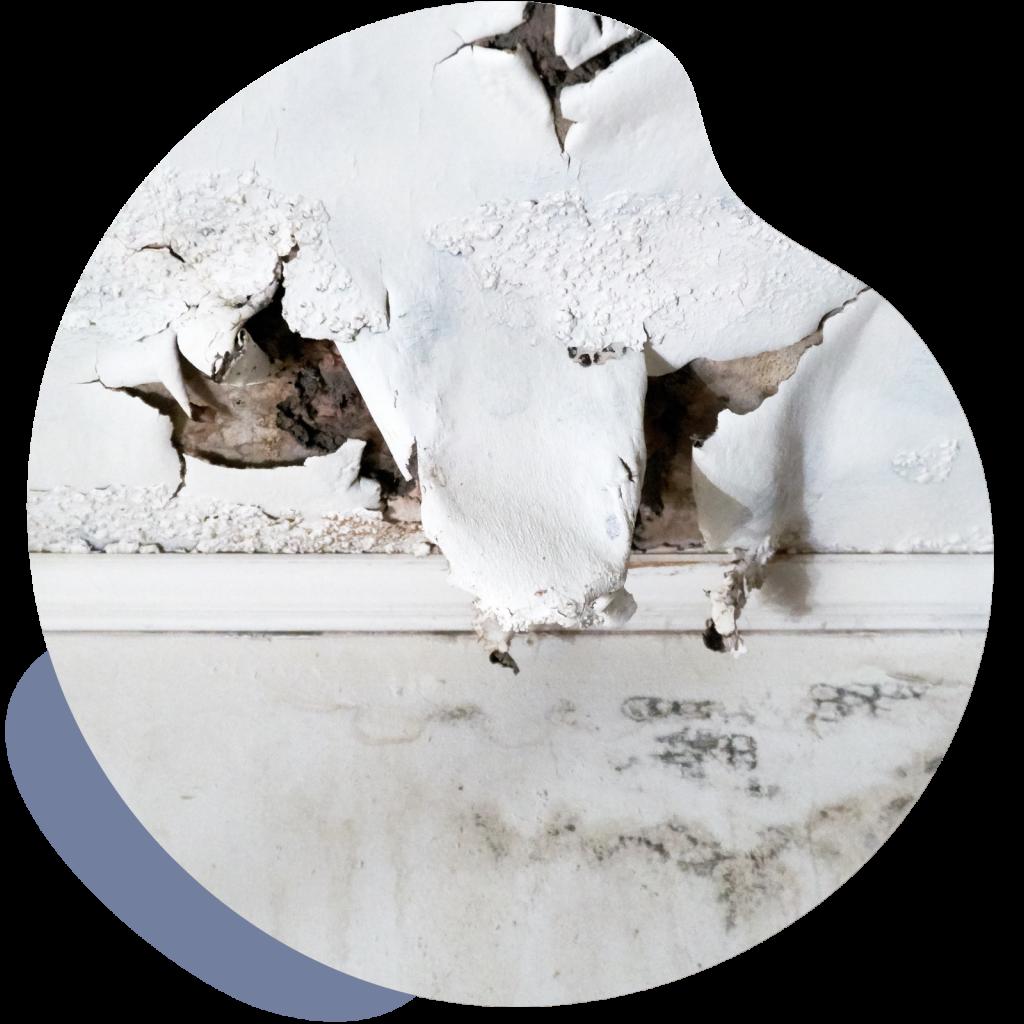 filtraciones-agua-pared-tratamiento