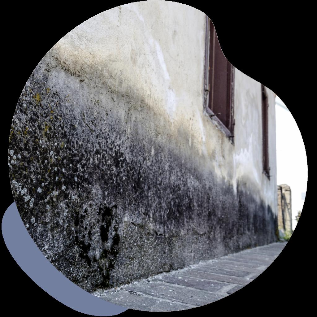 humedad-fachada-casa